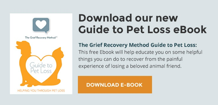 Losing A Pet Grieving The Loss Of A Friend The Grief Recovery Method