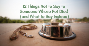 12 things not to say to someone whose pet died and what to say