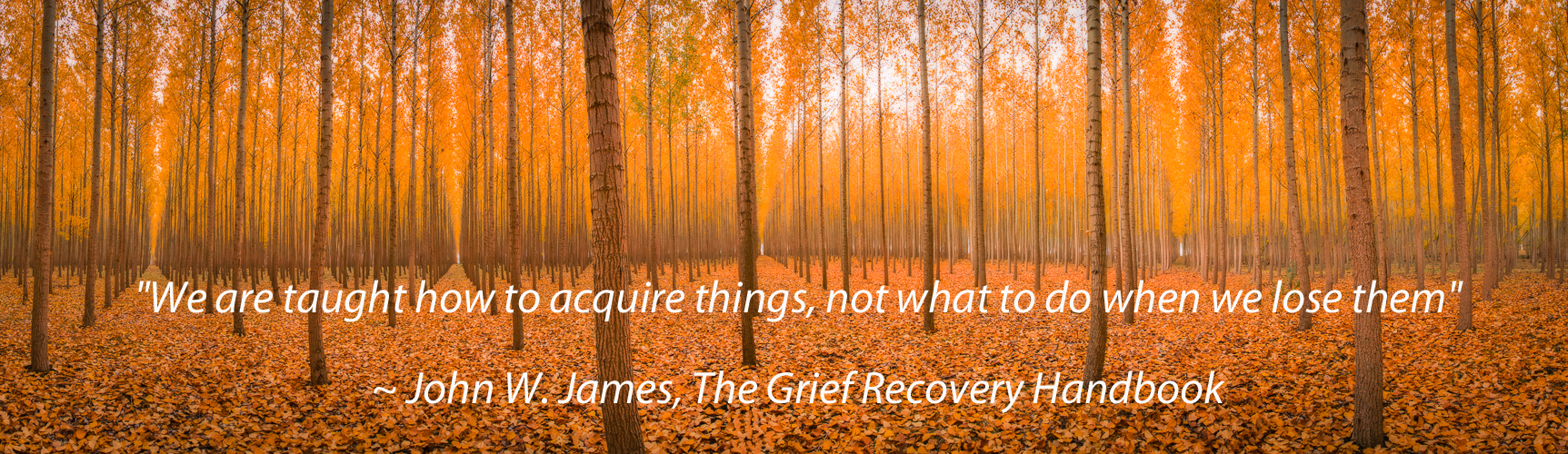 We are taught to acquire things not what to do when we lose them grief loss